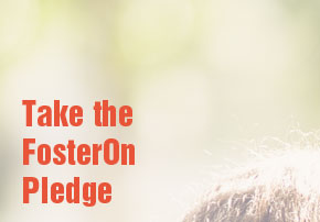 Take the FosterOn Pledge